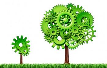 netwerken en groei