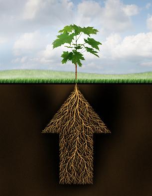 groeistrategieën